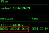 index_unique_scan