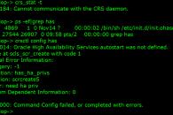 crs_stat_error